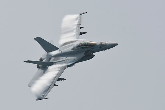Super Hornet and Growler